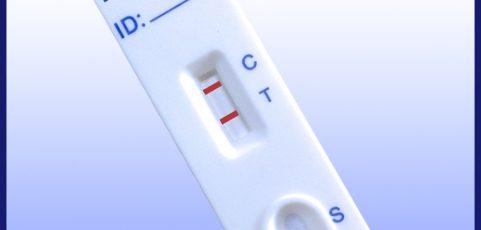 Prueba Rápida Leishmania Ac 5 tests